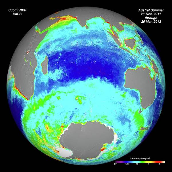 Suomi Photograph - Ocean Chlorophyll Concentrations by Nasa/suomi Npp/norman Kuring
