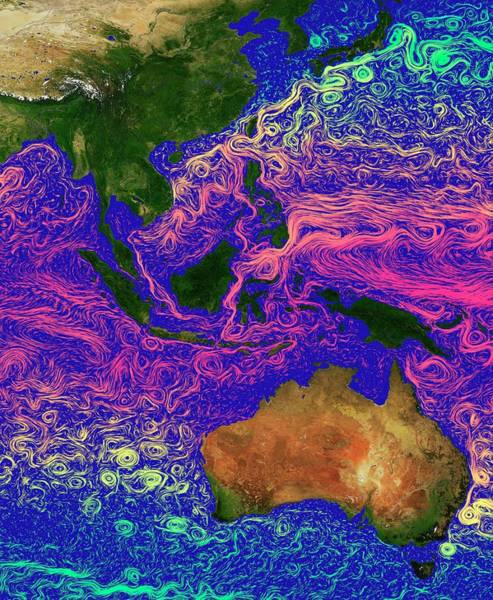 Current Photograph - Ocean Currents In The Coral Triangle by Karsten Schneider/science Photo Library
