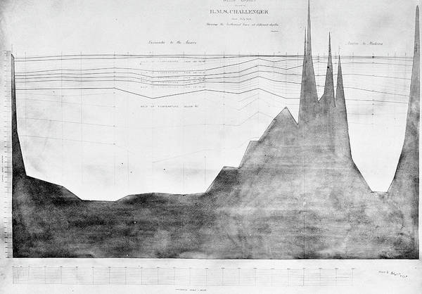 Wall Art - Photograph - Oceanic Depth Chart by Natural History Museum, London/science Photo Library