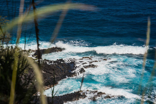 Photograph - Oceans Cove by Colleen Coccia