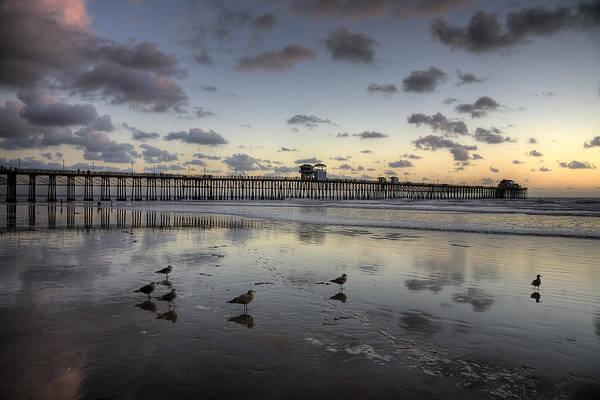 High Tide Photograph - Oceanside Pier Birds by Peter Tellone
