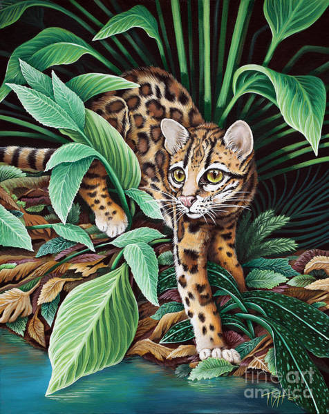 Painting - Ocelot by Tish Wynne