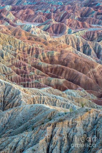 Photograph - Ocotillos And Ridges by Alexander Kunz