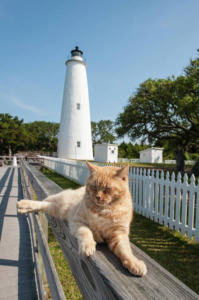 Ocracoke Lighthouse Photograph - Ocracoke Island Light Station, Outer by Michael Defreitas
