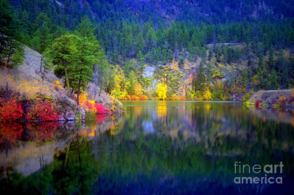 Photograph - October At Yellow Lake by Tara Turner