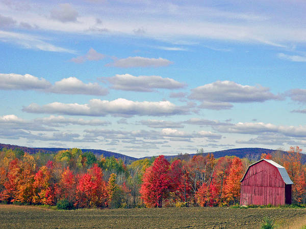 Photograph - October In Upstate New York by Byron Varvarigos