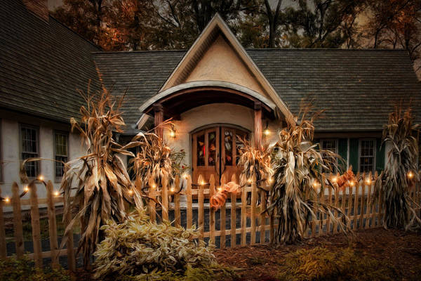 Photograph - October Lights by Robin-Lee Vieira
