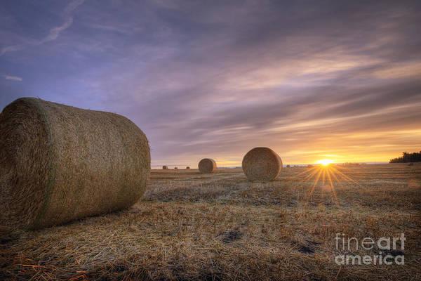 Hay Bale Wall Art - Photograph - October Morning by Dan Jurak