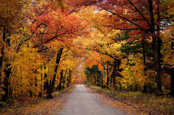 Mo Photograph - October Road by Cricket Hackmann