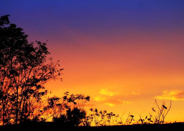 Photograph - October Sky by Candice Trimble
