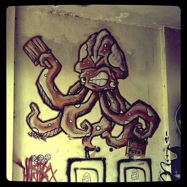 Brush Wall Art - Photograph - Octopus by Candace Fowler