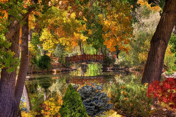 Canon 7d Photograph - Ode To Autumn by Donna Kennedy
