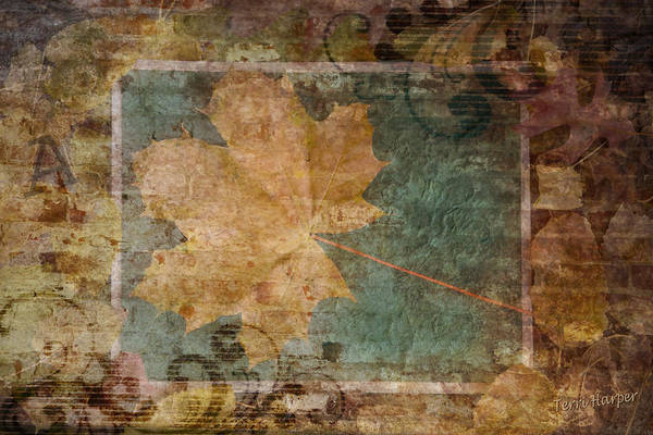 Photograph - Ode To Autumn by Terri Harper