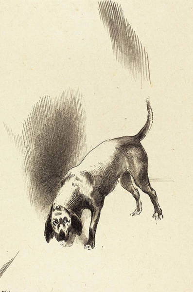 Wall Art - Drawing - Odilon Redon French, 1840 - 1916, The Dog by Quint Lox