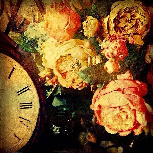 Blossom Photograph - Of Time And Roses by Paul Cutright