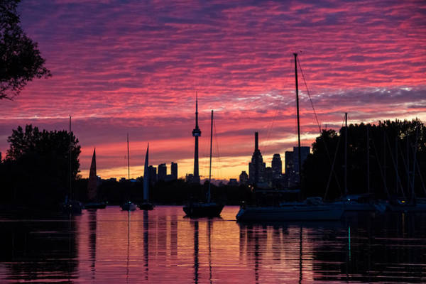 Photograph - Of Yachts And Skylines by Georgia Mizuleva