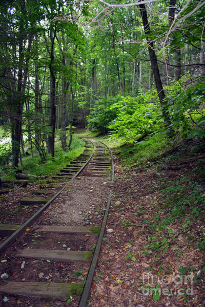Photograph - Off The Rails by Doc Braham