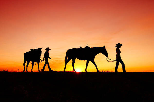 Cowboy Photograph - Off To The Barn by Todd Klassy