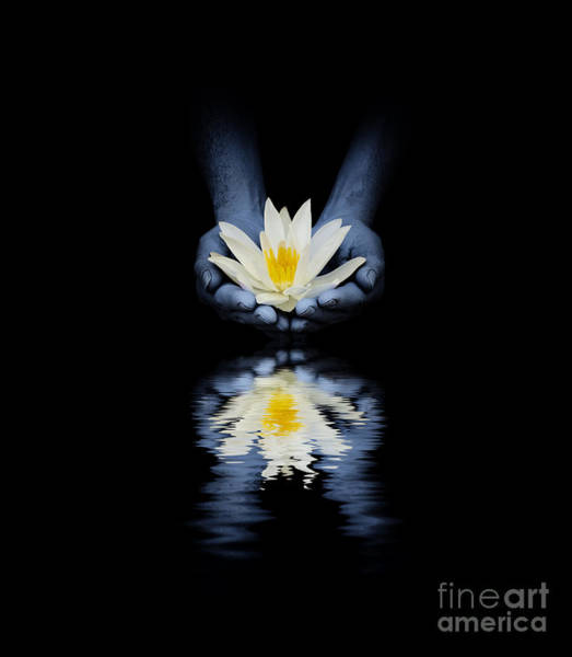 India Photograph - Offering Of The Lotus by Tim Gainey