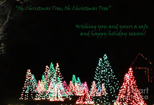 Photograph - Oh Christmas Tree by Gena Weiser