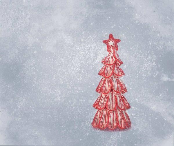 Photograph - Oh Christmas Tree by Kim Hojnacki