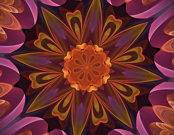 Digital Art - Oh La La Kaleidoscope by Barbara A Lane