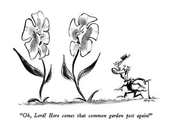 Flower Drawing - Oh, Lord!  Here Comes That Common Garden Pest by Lee Lorenz
