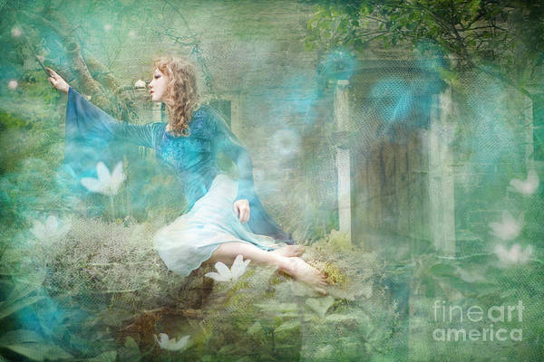 Wall Art - Photograph - Oh Spring Oh Where Are You by Angel Ciesniarska