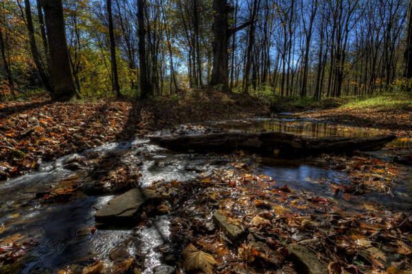 Photograph - Ohio Fall Beauty Scene by David Dufresne