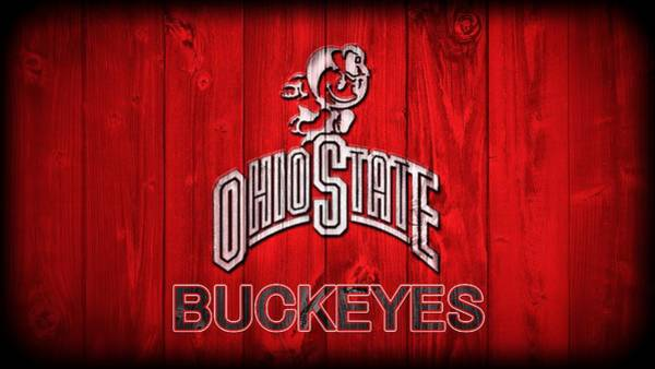 Pads Digital Art - Ohio State Buckeyes Barn Door Vignette by Dan Sproul
