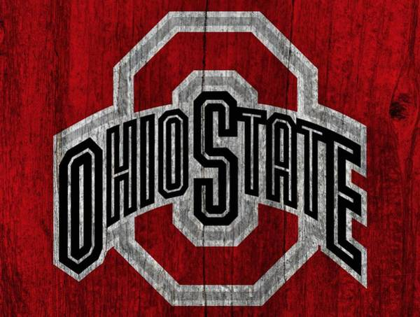 Pads Digital Art - Ohio State University On Worn Wood by Dan Sproul