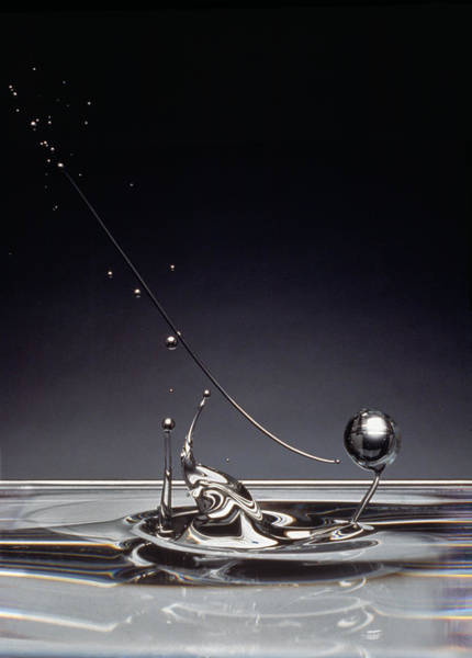Furon Photograph - Oil Drops by Daniel Furon