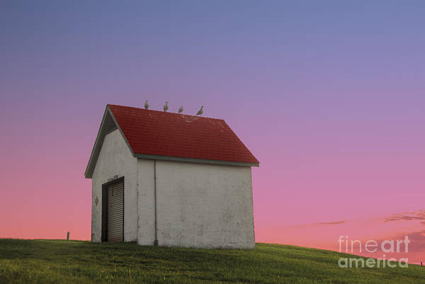 Point Of View Wall Art - Photograph - Oil House by Juli Scalzi
