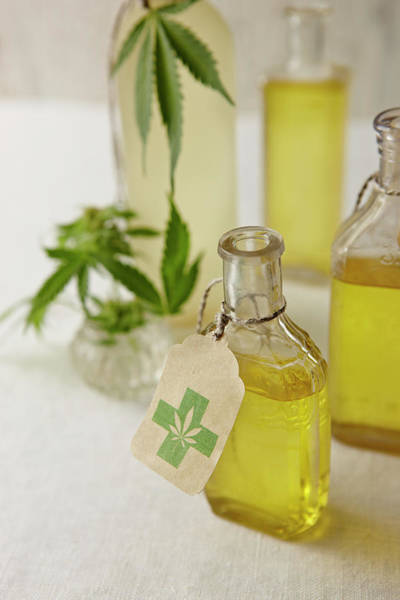 Olive Oil Photograph - Oil Infused With Marijuana by Lew Robertson