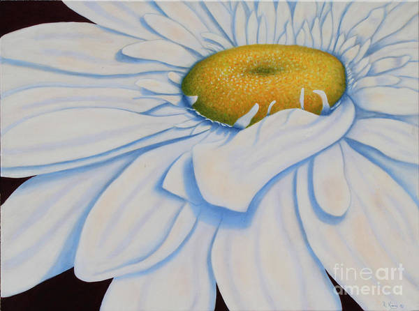 Wall Art - Painting - Oil Painting - Daisy by Roena King