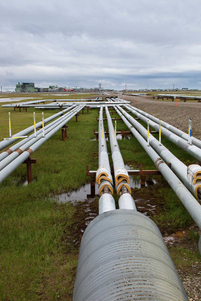 Wall Art - Photograph - Oil Pipelines With Gathering Center 1 by Lucas Payne