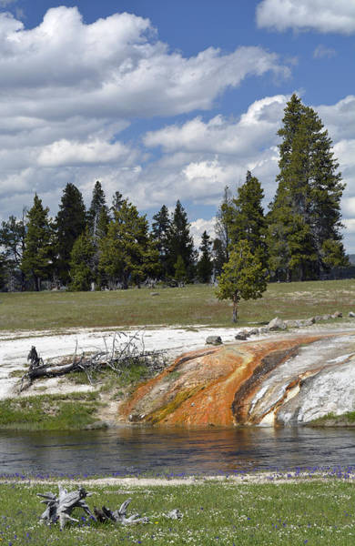 Photograph - Ojo Caliente Summer In Yellowstone by Bruce Gourley