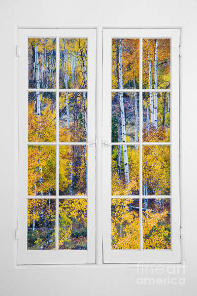 Wall Art - Photograph - Old 16 Pane White Window Colorful Fall Aspen View  by James BO Insogna