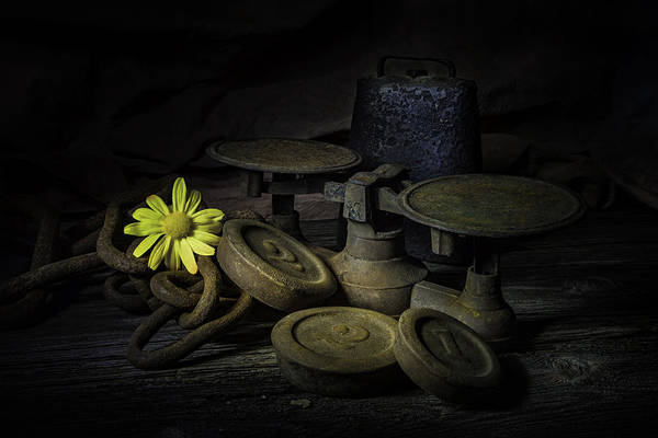 Weights Wall Art - Photograph - Old And Rusted Still Life by Tom Mc Nemar