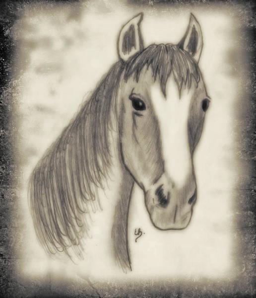 Drawing - Old Arwork by Elaine Malott