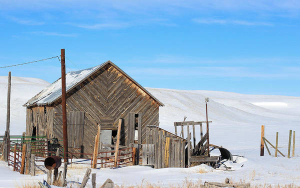 Christy Photograph - Old Barn by Christy Patino