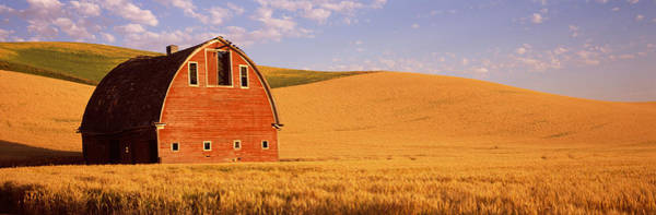 Wall Art - Photograph - Old Barn In A Wheat Field, Palouse by Panoramic Images