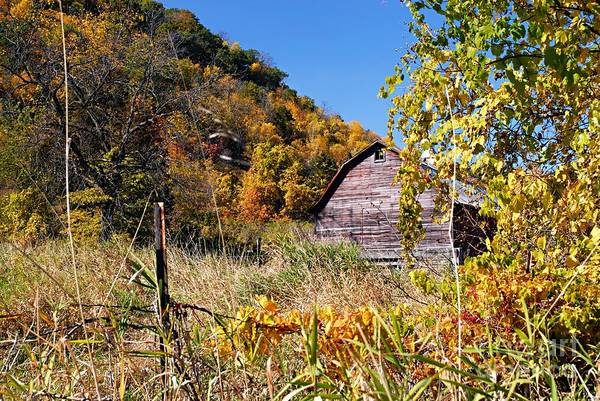 Photograph - Old Barn In Autumn by Larry Ricker