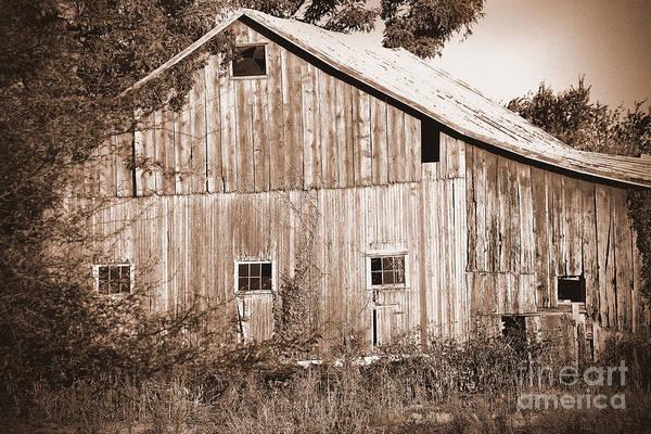 Photograph - Old Barn In Sepia by Karen Adams