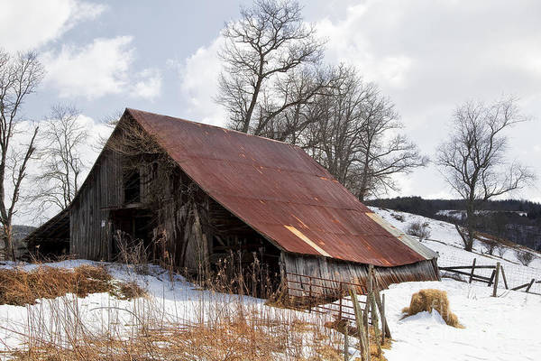 Photograph - Old Barn In Winter by Jill Lang