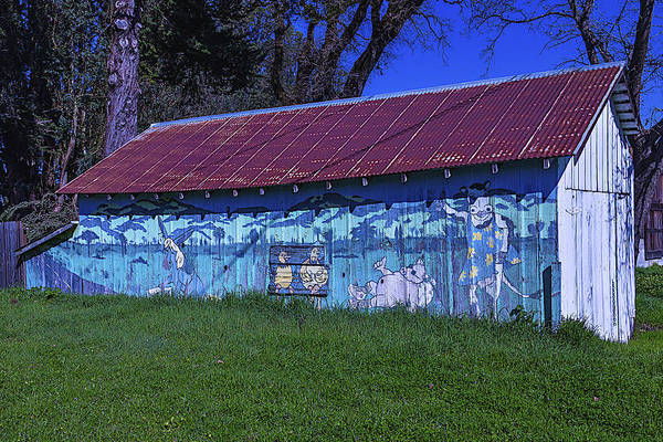 Tin Roof Wall Art - Photograph - Old Barn Mural by Garry Gay