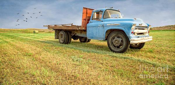 Wall Art - Photograph - Old Blue Farm Truck by Edward Fielding