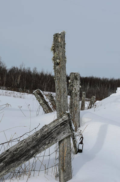 Fence Post Photograph - Old Boundaries by Susan Capuano