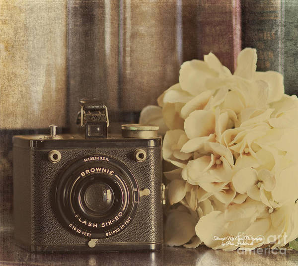 Photograph - Old Brownie by Pam  Holdsworth
