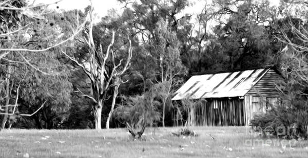 Shed Digital Art - Old Bush Shed by Phill Petrovic